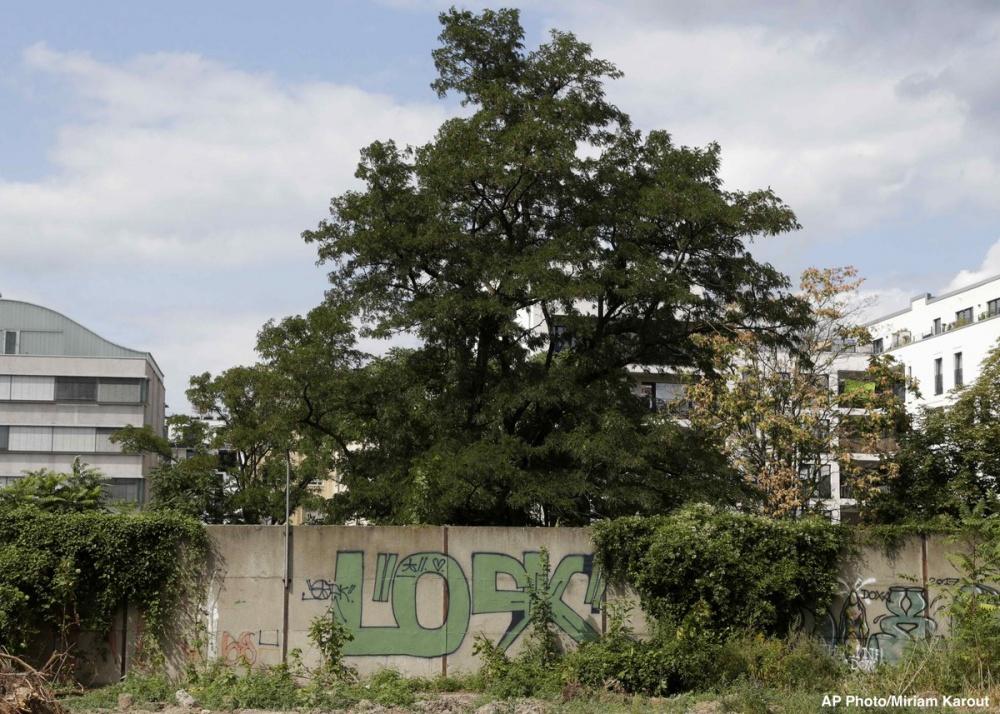 العثور على طلل منسي من جدار برلين